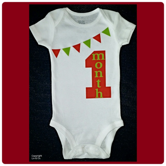 b0eea6724 1 Month Old Baby Girl Outfit - Baby Shower Gift