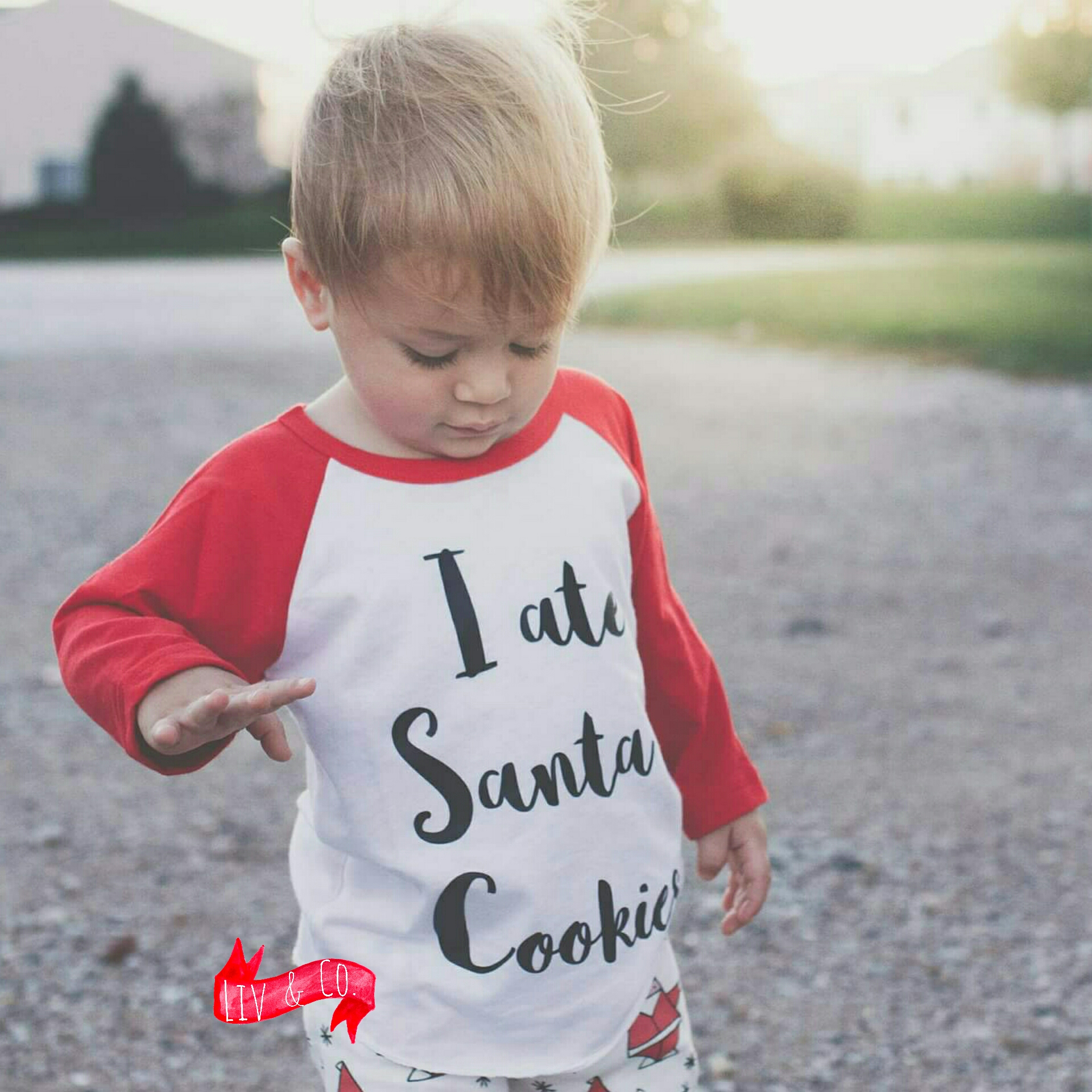cae39599f8 I Ate Santa's Cookies Baby and Toddler Christmas Shirt - Raglan Sleeve - © Liv & Co.™