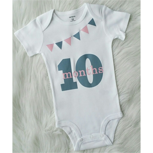 3d13d7527 Infant Newborn Baby Boy and Girl Monthly Milestone Outfits